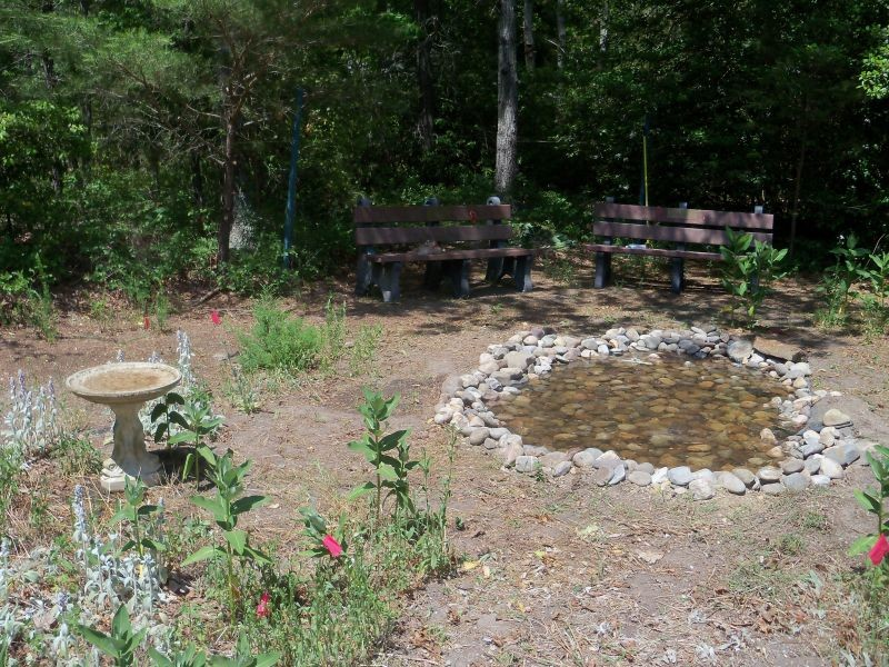 Garden picture with benches, stone pond and bird bath