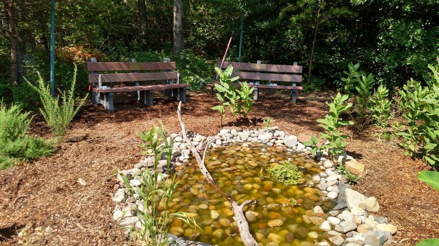 Garden picture with benches and small stone pond